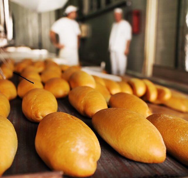 Create reports with our bakery management system